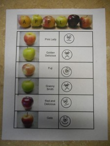 apple tasting worksheet