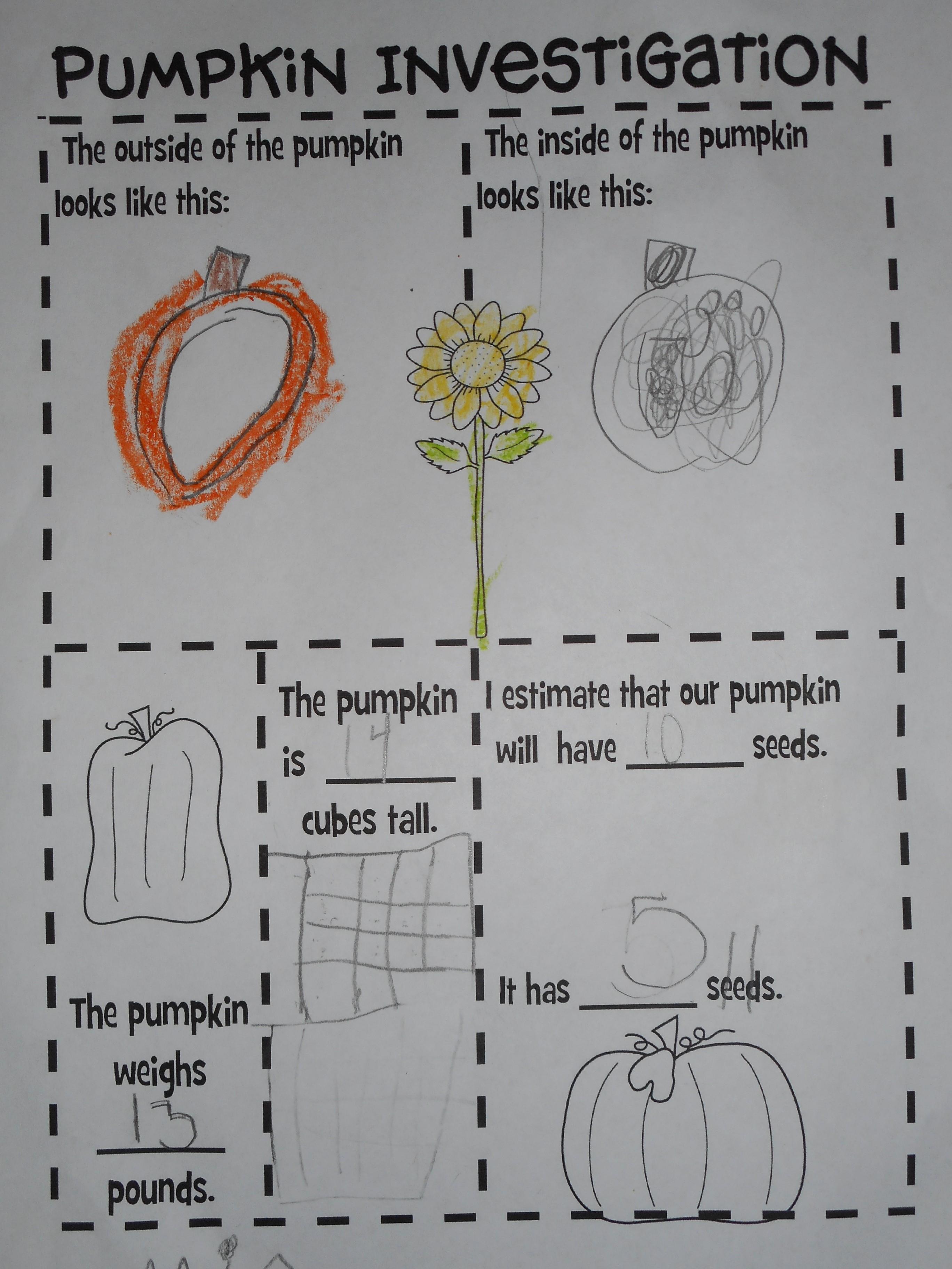 pumpkin parts | The Files of Mrs. E